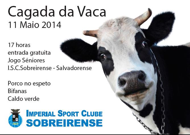cagada da vaca_2014